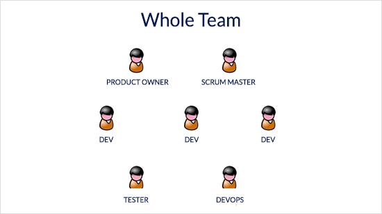 whole-team